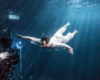 Howard Donald Zac Macaulay underwater photographer